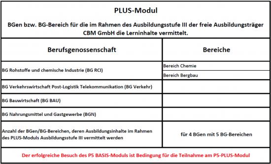 Plus Modul Ausbildung Fachkraft für Arbeitssicherheit CBM GmbH Bexbach